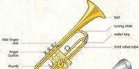 Gallery:Trumpet