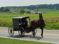 Lancaster County Amish 03