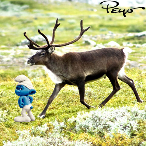 File:Grouchy with the Reindeer.jpg