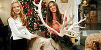 Sabrina's Perfect Christmas