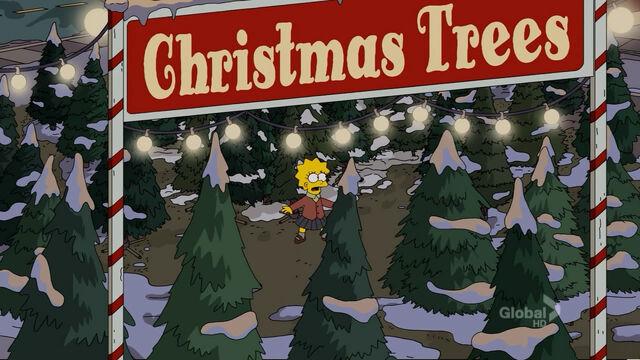 File:Christmas trees.jpg