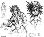 Cole Concept lg49
