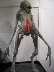 Alien- Resurrection - Newborn.jpg