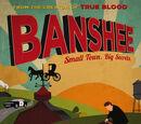 Banshee (2013 series)