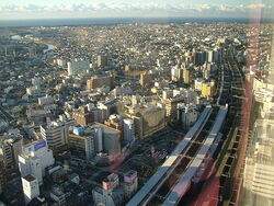 Hamamatsu Image