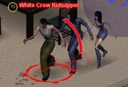 White Crow Kidnappers