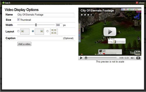 Video Display Options