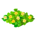 Blossoming Clovers-icon