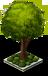 Shade Tree 2-SW