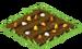 Candy Corn Seed