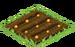 Jack-o-Lantern Seed