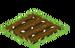 Mistletoe Crop Seed