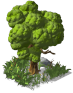 Medium Tree03