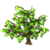 Cherimoya Tree-icon
