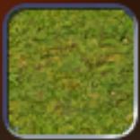 File:Grassland (Civ4Col).png
