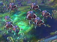 File:Be beetle3.jpg