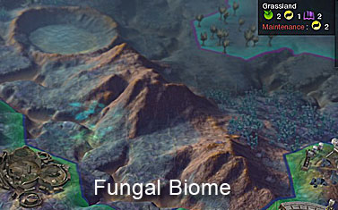 File:Fungalbiome1 (CivBE).jpg