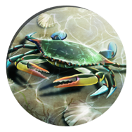 File:Crab (Civ5).png