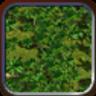 Jungle (Civ4Col)