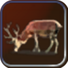 Deer (Resource) (Civ4Col)