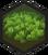 Rainforest (Civ6)