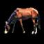 Horse (Civ4)