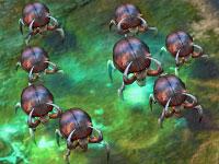 File:Beetle1 (CivBE).jpg