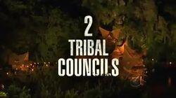 Double tribal