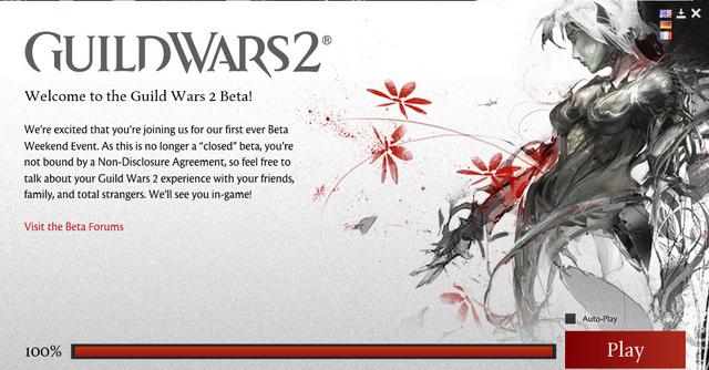 File:Gw2 beta update.png