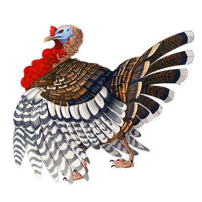 File:Item turkey.png