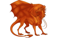 Dragon Adult