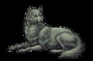 Wolfadult