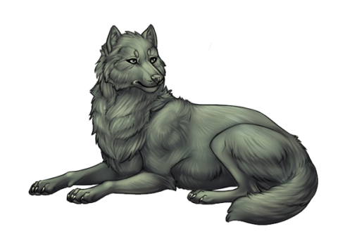 File:Wolfadult.png