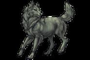 Wolfalpha