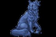 Cat Shaman