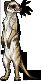 File:Item meerkat.png