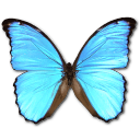 File:Emoticon butterfly.png
