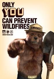 File:Smokey needs you.jpg
