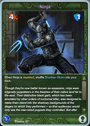 Promo7 Ninja