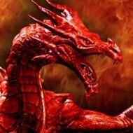 Dragonhoffava