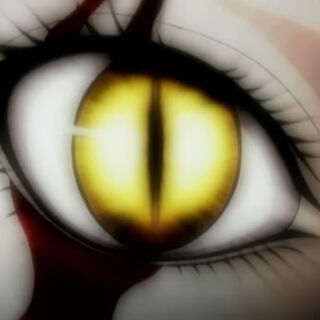 Gold eyes of a Claymore when releasing 10% yoki or more