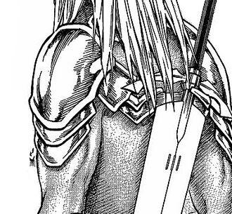 Sword hooks