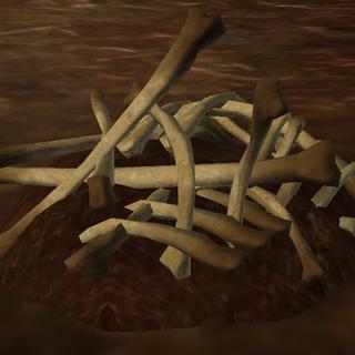 The Rancor bone samples