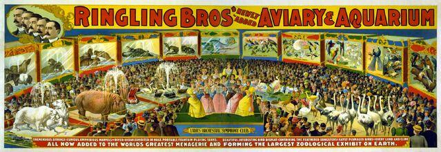 File:Circus Poster.jpg