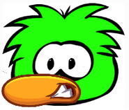 Green Duckle
