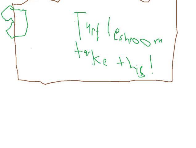 File:For Turtleshroom.jpg