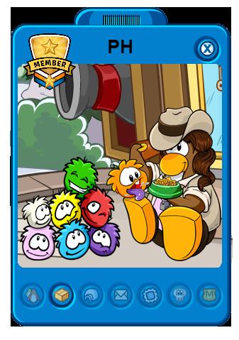 File:NewPHplayercard.png