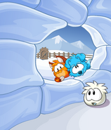 Puffle Dog and Cat