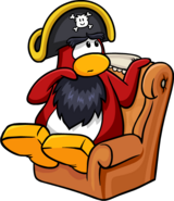 Rockhopper Sitting