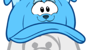 Blue Border Collie Hat